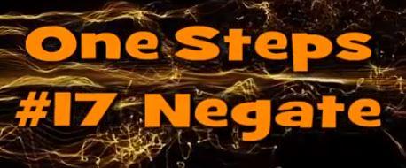One Step #17 Negate