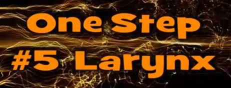 One Step #5 Larynx